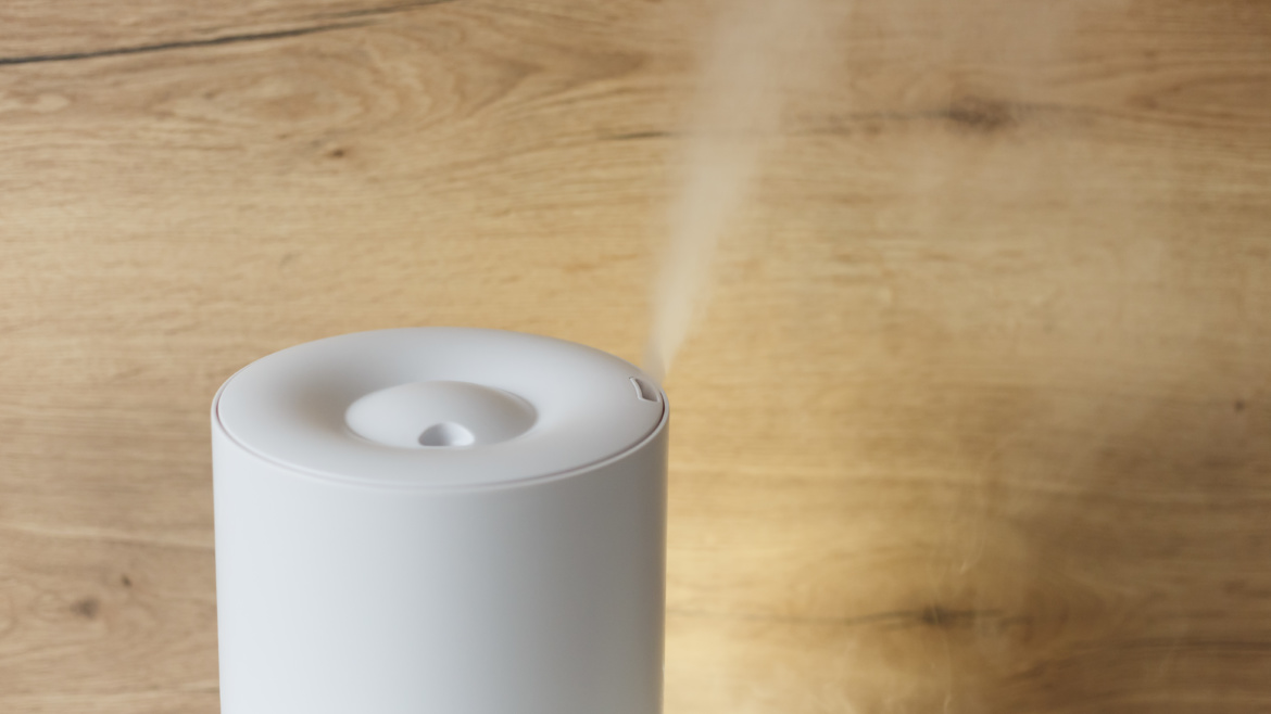 Humidifier Versus Purifiers